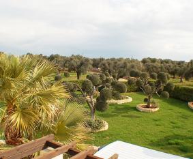 Aussicht Dachterrasse | view roof terrace | visualizza la terrazza sul tetto